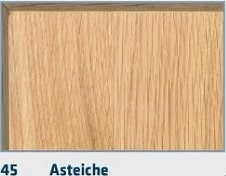 45-Asteiche