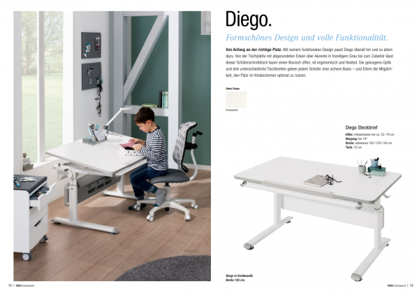 Paidi Schreibtisch Diego Schoolworld Buro Schreibtische
