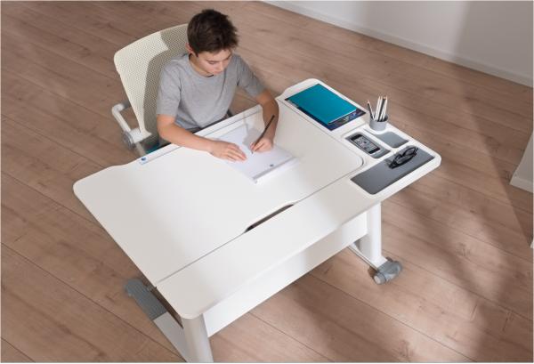 Paidi Schreibtisch Jaro 2021
